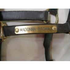 Brass Name Plates for Headstalls